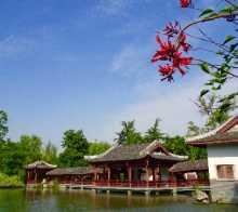 【家乡美】美景就在蓉城