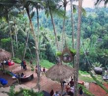 中国游客最爱的巴厘岛却有百分之八十的人没去过这些景点拍过照