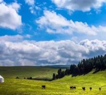 喀拉峻|每一季都有每一季的风情,每一处都有每一处的风景