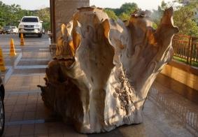 【大千世界】万象地表酒店的几件木雕